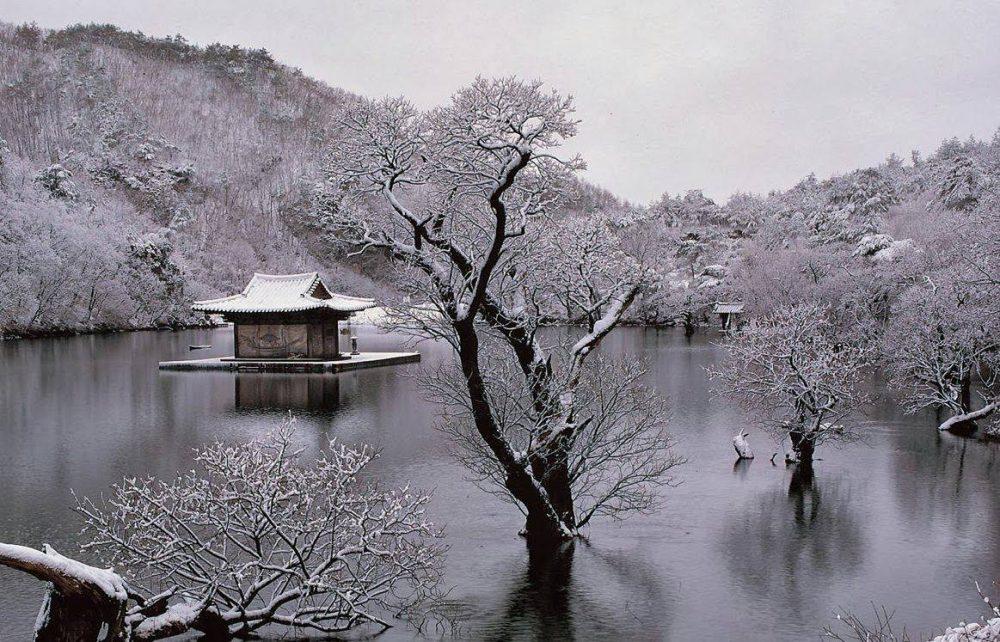 лето осень зима… и снова весна Bom Yeoareum Gaeul Gyeoul Geurigo Bom 2003 scaled